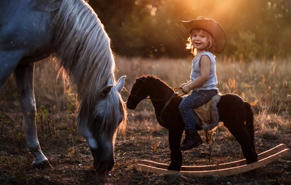Картинка конь, лошадь, шляпа, мальчик, наездник, качалка, лошадка