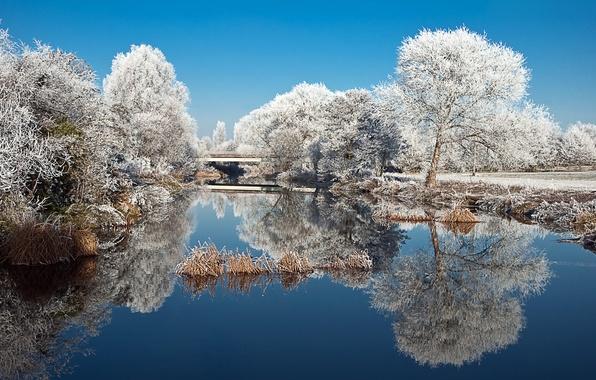 Картинка зима, иней, деревья, природа, озеро, пруд, парк, отражение, Пейзаж