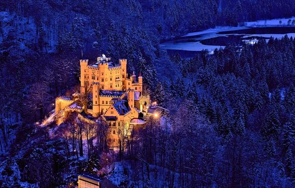 Картинка зима, лес, деревья, замок, Германия, Бавария, Germany, Bavaria, Замок Хоэншвангау, Hohenschwangau Castle