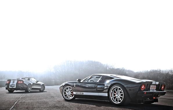 Картинка Mustang, Ford, Shelby, GT500, мустанг, серебристый, кабриолет, мускул кар, форд, блик, шелби, rear, Muscle car, …