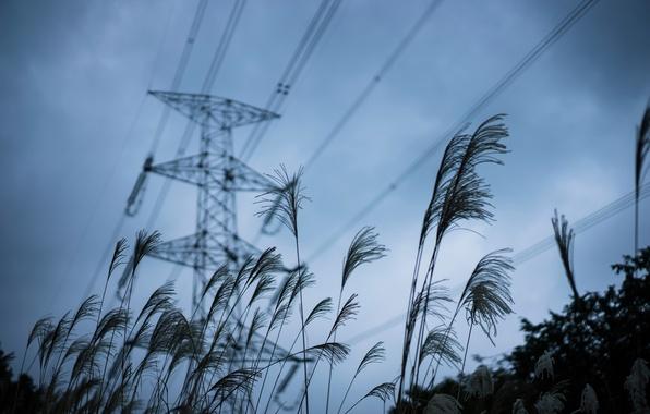 Картинка небо, трава, лэп
