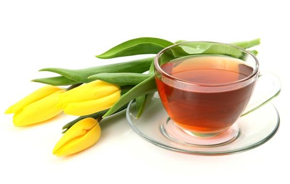 Картинка стекло, цветы, чай, желтые, чашка, тюльпаны, белый фон, блюдце
