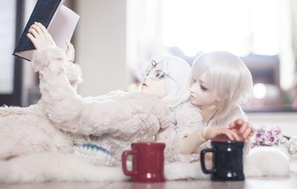 Картинка цветы, кукла, очки, чашки, чашка, книга, парни, белые волосы, doll, BJD