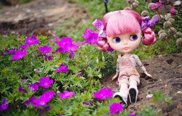 Картинка взгляд, цветы, камень, игрушка, кукла, сидит, розовые волосы
