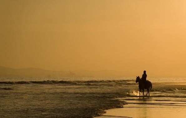 Картинка песок, море, животные, вода, люди, океан, конь, берег, пейзажи, лошадь, человек, кони, утро, лошади, прогулка, …