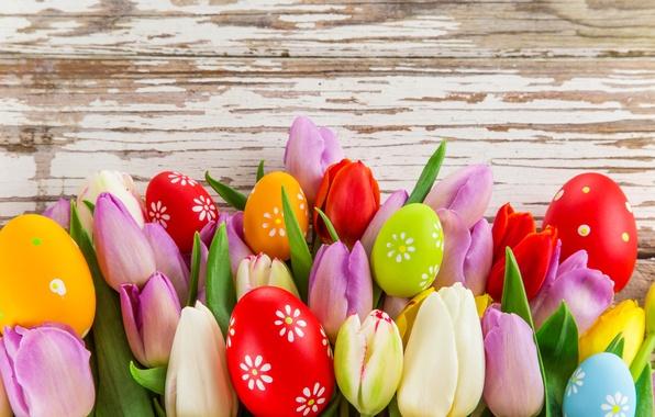 Картинка фото, Цветы, Листья, Тюльпаны, Пасха, Яйца, Праздник