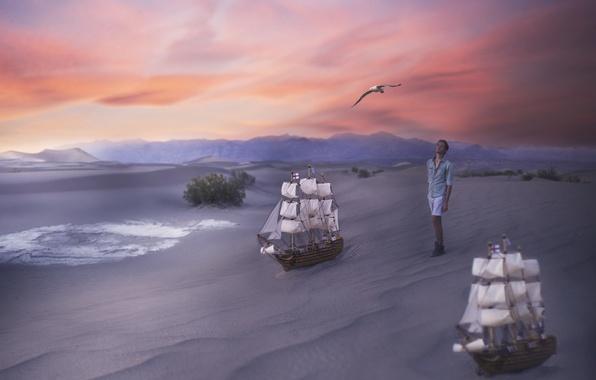 Картинка песок, птица, человек, корабли