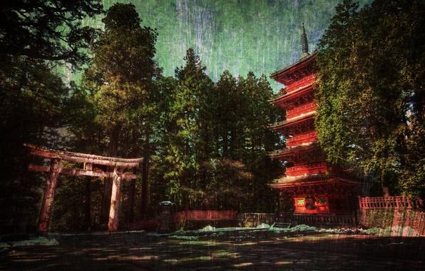 Картинка лес, дом, япония