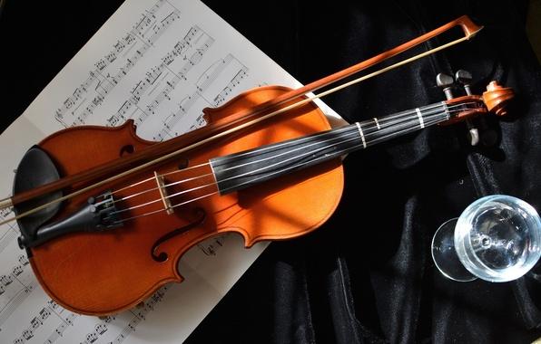 Картинка ноты, музыка, скрипка, бокал, струны, инструмент, смычок