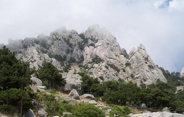 Картинка природа, туман, Горы