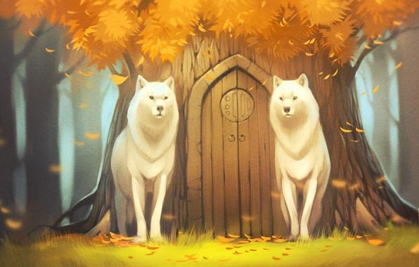 Картинка лес, дерево, волк, дверь, арт, древо, белые волки