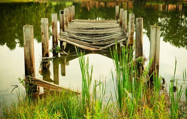 Картинка вода, озеро, пруд, река, растение, мостик