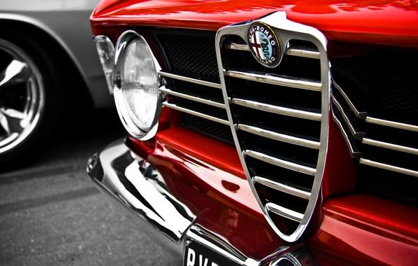 Картинка макро, красный, Alfa Romeo, red, logo, альфа ромео, macro
