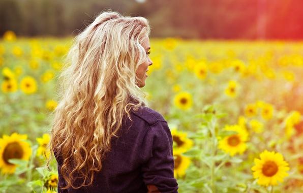 Картинка поле, лето, девушка, свет, подсолнухи, цветы, лицо, улыбка, тепло, настроение, поляна, волосы, спина, цвет, кофта