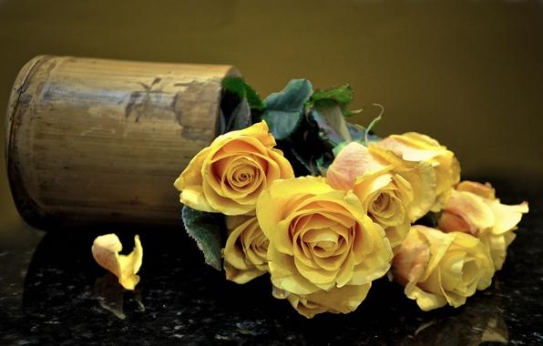 Картинка розы, букет, лепестки, ваза