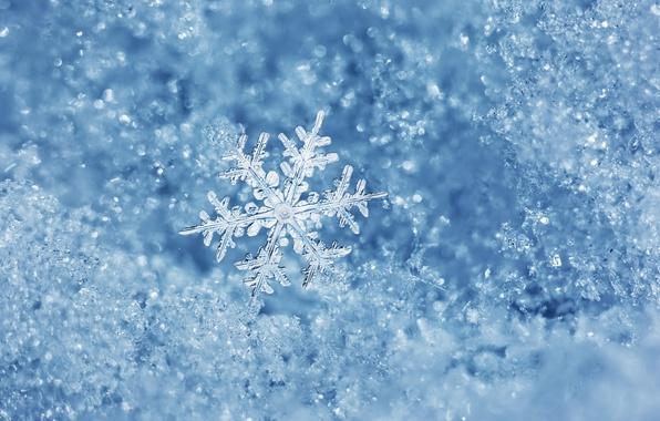 Картинка лед, зима, вода, макро, лёд, снежинка