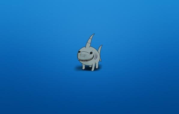 Картинка улыбка, минимализм, акула, синий фон, shark, зубастая, плавниковолапый вид