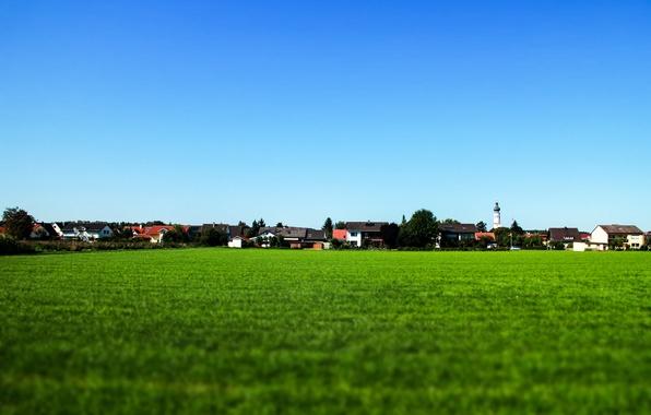 Картинка поле, небо, трава, синий, деревня