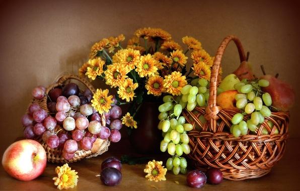 Картинка цветы, яблоко, виноград, груша, фрукты, натюрморт, хризантемы, слива