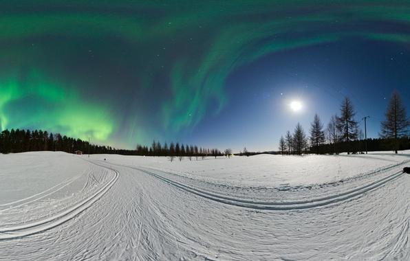 Картинка зима, лес, снег, деревья, столбы, провода, северное сияние