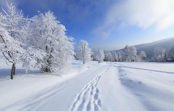 Картинка зима, небо, облака, снег, деревья, пейзаж, горы, природа