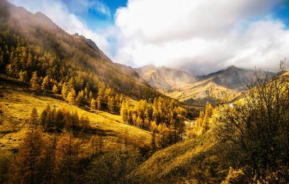 Картинка осень, небо, облака, деревья, пейзаж, горы, природа, холмы, Италия, Italy, Italia, Piemonte, Пьемонт, Chianale