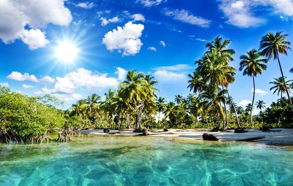 Картинка море, пляж, небо, солнце, облака, природа, тропики, пальмы, солнечные лучи