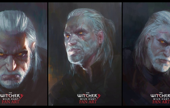 Картинка Дикая Охота, Арт, Ведьмак, CD Projekt RED, The Witcher 3: Wild Hunt