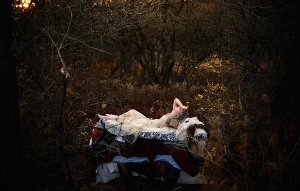 Фото обои Princess and the Pea, Hans Christian Andersen, по мотивам сказки, девушка, лес