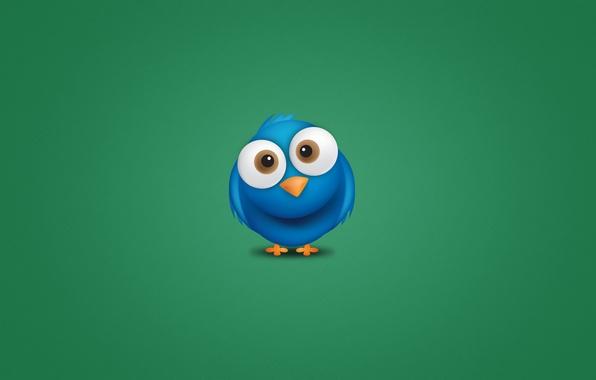Картинка синий, животное, птица, минимализм, глазастая, Twitter, птаха