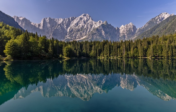 Картинка лес, деревья, горы, озеро, отражение, Калифорния, Йосемити, California, Национальный парк Йосемити, Yosemite National Park, Сьерра-Невада, …
