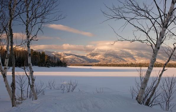 Картинка зима, лес, небо, облака, снег, деревья, закат, горы, береза