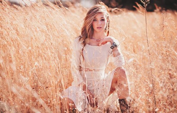 Картинка поле, поза, колоски, блондинка