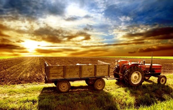 Поле небо трактор телега обои фото
