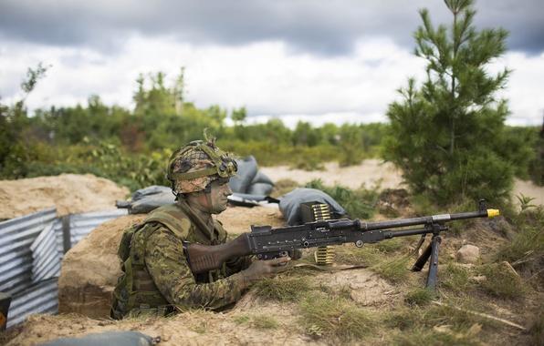 Картинка оружие, солдат, Canadian Army