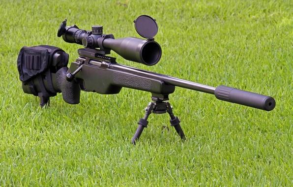 Картинка трава, оружие, оптика, винтовка, глушитель, снайперская, SakoTRG-22
