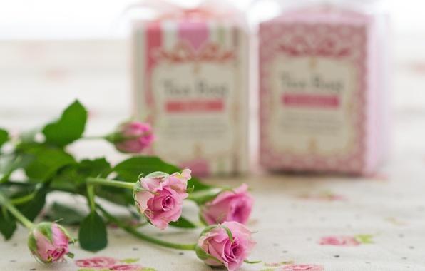 Картинка цветы, бутоны, flowers, розовые розы, pink roses, buds