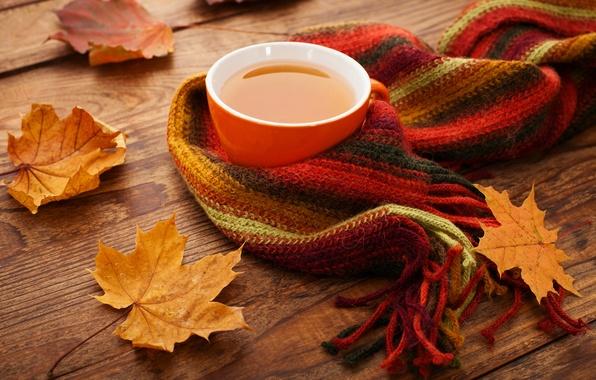 Картинка осень, чашка, клён, autumn, leaves, cup, tea, scarf, fall, осенние листья, maple