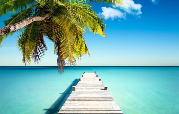 Hd Tropical Island Beach Paradise Wallpapers And Backgrounds: Обои Tropical, Paradise, Pier, Coast, Sea, Blue, Emerald