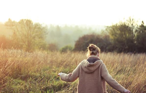 Картинка поле, трава, девушка, спина, кофта