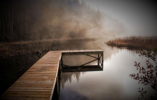 Картинка осень, лес, природа, туман, река, фон, серость, обои, берег, утро, пирс, wallpapers