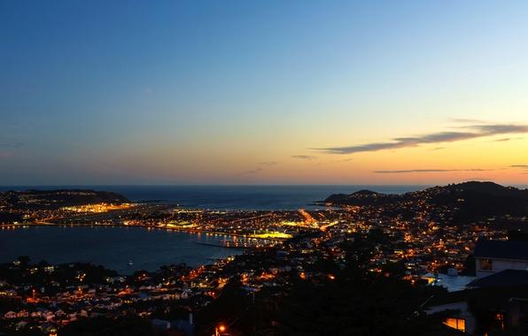 Картинка море, ночь, огни, побережье, дома, Новая Зеландия, панорама, Wellington