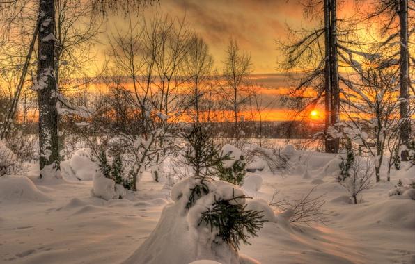 Картинка зима, небо, солнце, облака, пейзаж, закат, природа, white, белые, sky, landscape, nature, красивые, sunset, beautiful, …