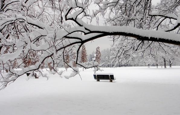 Фото обои зима, снег, парк, скамья