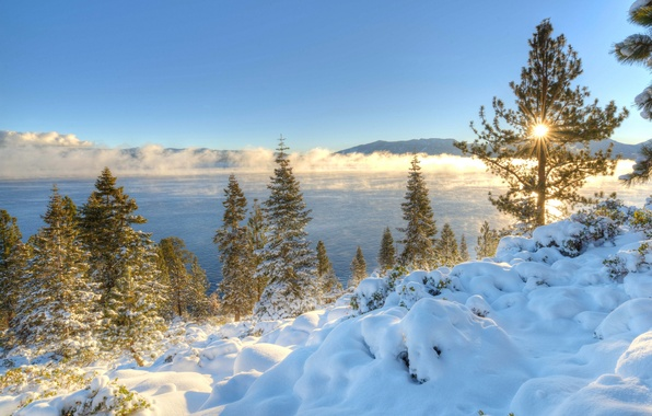 Картинка зима, снег, деревья, горы, озеро, восход, рассвет, утро, Калифорния, Невада, California, Nevada, Сьерра-Невада, Lake Tahoe, …