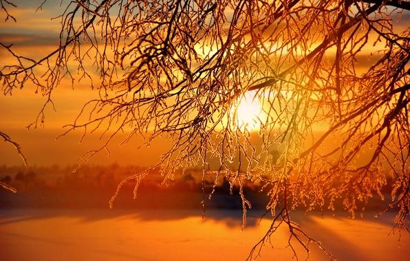 Картинка зима, солнце, закат, sunset, winter, Sunrises