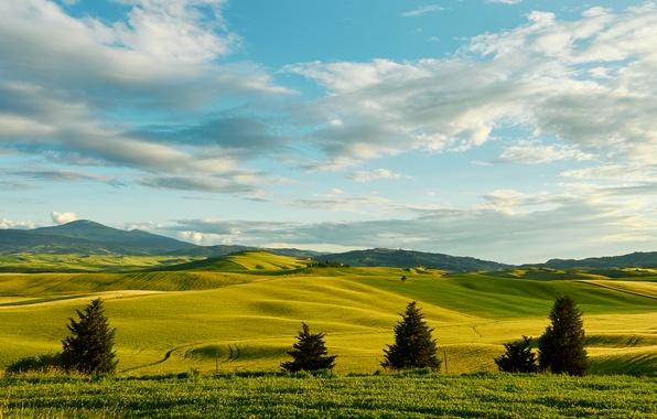 Картинка зелень, небо, трава, облака, деревья, холмы, поля, простор, Италия, Тоскана