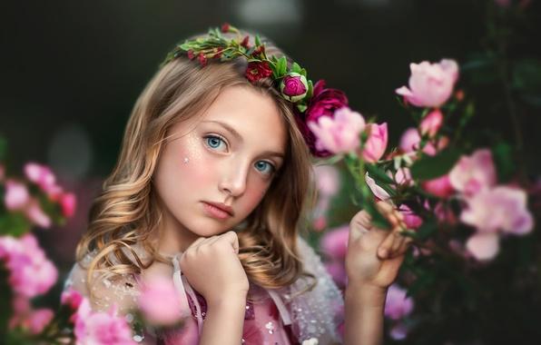 Картинка взгляд, цветы, портрет, девочка, венок