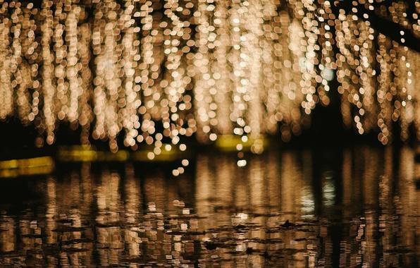 Картинка вода, макро, огни, фон, дождь, обои, человек, размытие, лужа, wallpaper, rain, широкоформатные, background, macro, боке, …