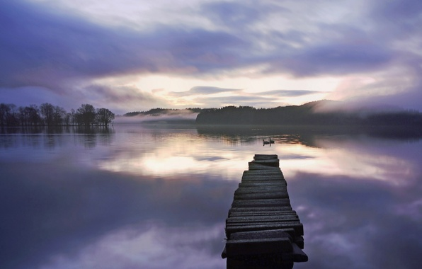 Картинка лес, туман, озеро, рассвет, мостик, лебеди